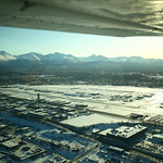 Back to Anchorage! by Joe Connolly