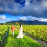 Kauai Wedding: Rayna & Jacob in Kauai by Joe Connolly