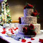 Anchorage Wedding: Gabriella & Dan at the Anchorage Hilton